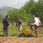 volunteer tourism on an organic farm