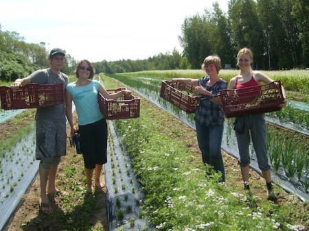 Slow-Travel-work-exchange-WWOOF-volunteers-in-Canada-450x337