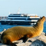 Hotels vs. Cruise Ships on the Galapagos Islands