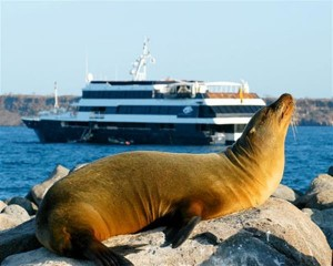 ships vs. hotels in the galapagos