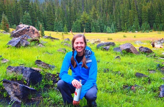 Elk antlered and awestruck in Rocky Mountain National Park